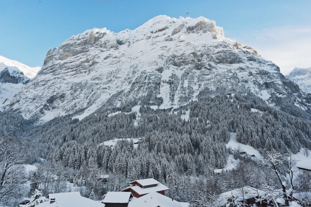 Hotel Alpenblick - rooms lookup 53